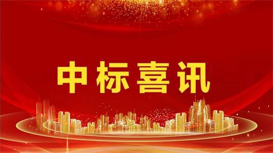 大化瑶族自治县人民法院互联网+...